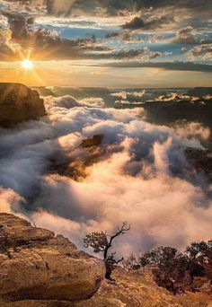 Porqué las personas amamos la naturaleza? queremos estar allí y sentir esa sensación de plenitud, energía y esperanza. Porque allí nos sentimos más cerca de El.