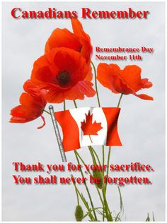Canada's Remembrance Day, November We shall never forget.