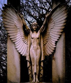 The Bianchi Memorial in West Hampstead Cemetery :: By Mick Coughlan
