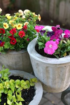 Diy outdoor flower pots how to make concrete planters diy outside flower pots . Cement Flower Pots, Cement Pots, Flower Planters, Succulent Planters, Diy Concrete Planters, Diy Planters, Concrete Projects, Concrete Art, Diy Projects