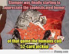 Stomper Was Finally Starting To Appreciate The...