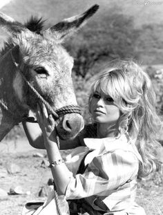 Brigitte and Donkey.  Great beauty great compassion.