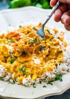 This Coconut Shrimp Curry features delicious shrimp in a coconut curry that's perfect over cooked rice and ready in only 25 minutes!