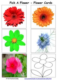 Mother's Day Preschool Theme This activity, Pick A Flower, is a fun Circle Time activity that can then be added to your preschool math area or preschool library for extended fun!  It is part of my DONE FOR YOU Mother's Day Theme pack!