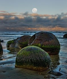 Katiki Boulders, New Zealand, by Ian@NZFlickr, via Flickr. Found on the north-facing shore of Shag Point some 12 miles south of where the Moeraki Boulders are found. These concretions occur as both spherical cannonball concretions and flat, disk-shaped or oval concretions. Unlike the Moeraki boulders, some of these concretions contain the bones of mosasaurs and plesiosaurs.