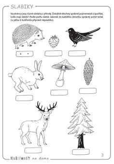Nature Activities, Activities For Kids, Paw Patrol Coloring, Baby List, Activity Sheets, Winter Wonder, Working With Children, Forest Animals, Math Worksheets