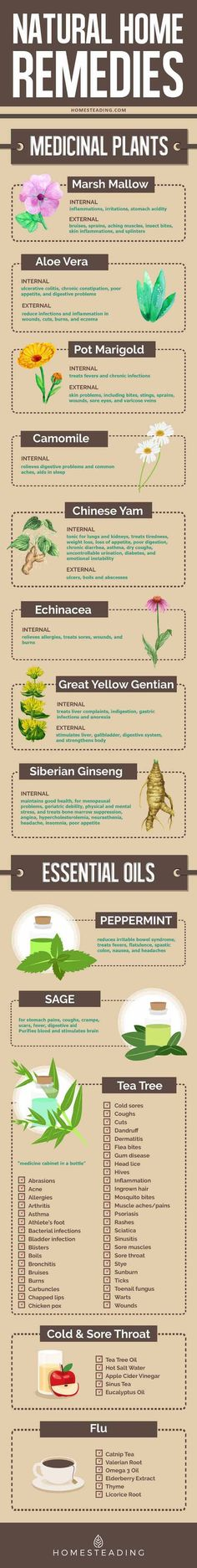 Essential Oils For First Aid Any Prepper Should Have