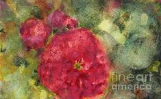 Rose Louis Zavier Auguste Miellez I - for sale in my webshop at FINE ART AMERICA