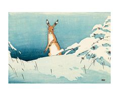 Snow and Hare colour woodcut by Allen William Seaby