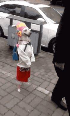 9) Remember, always dress warm!