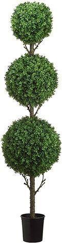 5.5' Tri Ball Boxwood Topiary
