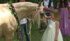 Make-A-Wish Hawaii grants girl's dream to meet a unicorn