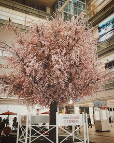Station Square 2017 Spring Cherry blossom (An artificial flower)- Sagami-Ono Station Square iPhone7/Procamera/VSCO/RNI Films  #cherryblossom #桜 #相模大野ステーションスクエア #相模大野駅 #japan  #VSCO #vscocam #rnifilms #shotoniPhone #instadiary #shotoniPhone7 #instagramjapan #ig_japan #instadiary #iphonephotography #ink361_mobile #ink361_asia #reco_ig #igersjp #mwjp #team_jp_ #indies_gram #hueart_life #ig_street #streetphotography #奥行き同盟 #写真好きな人と繋がりたい #写真撮ってる人と繋がりたい #東京カメラ部 #tokyocameraclub #iPhone越しの私の世界