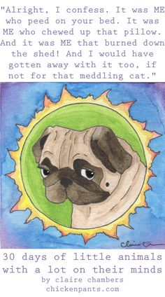 True Pug Confessions - part of 30 Days of Little Animals With A Lot On Their Minds - by Claire Chambers - Chickenpants.com