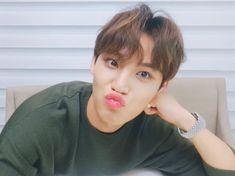 bibirnya ya, siapa yg ajarin?! Mingyu Wonwoo, Seungkwan, Woozi, Seventeen Memes, Mingyu Seventeen, 17 Kpop, Kim Min Gyu, Seventeen Wallpapers, Pledis Entertainment