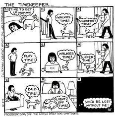 💕 Sunday Funny 😆  #offleash #Comics #Farside #Sundayfunday  #Sundayfunny #merryjaneandthor Dog Jokes, Funny Dog Memes, Funny Dogs, Funny Animals, Animal Funnies, Weimaraner, I Love Dogs, Puppy Love, Dog Comics