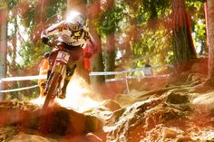 Nick Beer - Hitting a rocky patch, Val di Sole 2012.  Photo by Sven Martin.