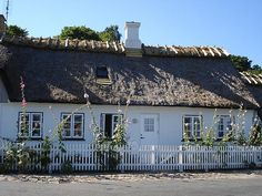 Thatched cottage at Humlebaek with holly hocks. The owner looks across the sea to Sweden. Many memories!