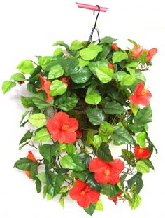 Fourwalls 45 cm tall Hibiscus Hanging Basket Decorative Artificial Plant(red)
