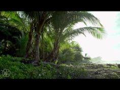 COSTA RICA IN 4K 60hz (ULTRA HD) w/ Freefly Movi - YouTube