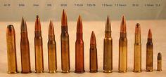 bullet-caliber-comparison-i13.jpg (1000×469)