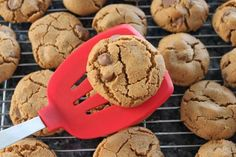 flour-less peanut butter chocolate chip cookies!  substitute the egg with a mushed banana and they are also vegan. must try...