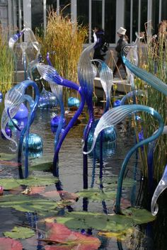 Chihuly glass at the New York Botanical Garden