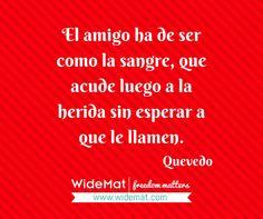 #frasesdeldia #frasesbonitas #frasesdelavida #verdaderosamigos #amistad #frasewidemat