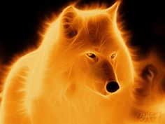 ~Wolf~ Fire Manipulation