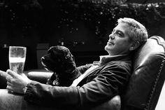George Clooney y su compañero en un merecido descanso