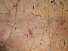 A wide array of animals were depicted in the cave drawings found in Brazil's Cerrado plateau.