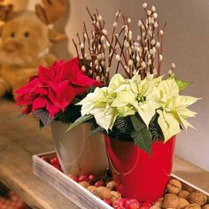 Poinsettias Christmas Centerpiece - I like the simple pots and solid colors.