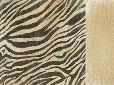 Into The Wild- Zebra