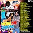 DJ ROY - HOW ME GROW DANCEHALL MIX