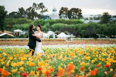 The Flower Fields provide a stunning backdrop for your wedding, corporate gathering or other special event. See photos and read more information.