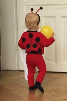 selbst gemachtes Kostüm Marienkäfer Kleinkind