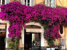 *Salotto 42- Cocktail bar- Piazza di Pietra 42 ROME