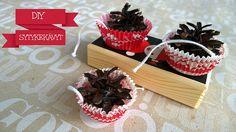 Make your own pine cone fire starters. / Sytykekävyt pukinkonttiin. Ohje blogissa.