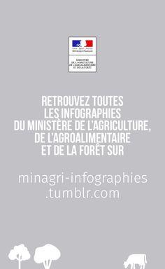 http://minagri-infographies.tumblr.com