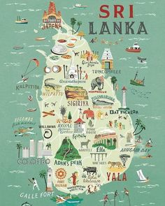 Travel infographic Sri Lanka for Food Lovers A Culinary Map Lavender and Lovage