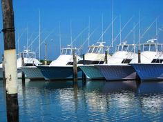 101 things to do in Outer Banks: Angler's Paradise for fishing