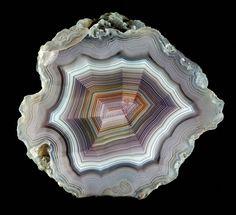 Laguna agate, By Captain Tenneal / Mineral Friends <3