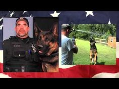 Better Copy of the Memorial Montage of K-9 Jethro : Doggies.com Dog Blog
