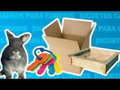 Juguetes caseros para conejos - YouTube Make It Yourself, Pets, Logos, Youtube, Animals, Funny Animal Videos, Cute Pets, Bunnies, Homemade