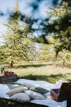 canberra-wedding-photographer-videographer-engagement-picnic-vintage-50s-fifties-stylist-australia-southern-highlands-forest