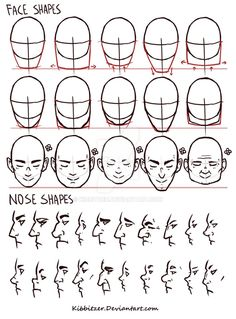 Figure Drawing Reference Face/Nose shapes reference by Kibbitzer on deviantART Drawing Heads, Nose Drawing, Drawing Face Shapes, Figure Drawing Reference, Art Reference Poses, Face Reference, Drawing Techniques, Drawing Tips, Drawing Lessons