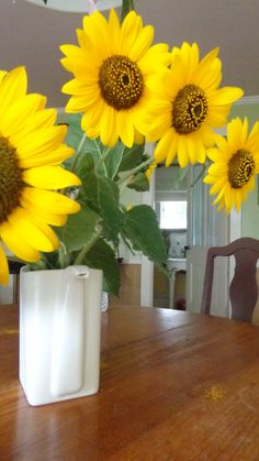 Summer sunflowers an