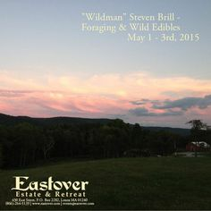 Hike through the 600 acre woodland of Eastover, learn about the environment, and get back in touch with nature.