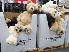 53-Inch Plush Teddy Bear Costco