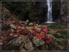 五宝の滝の秋